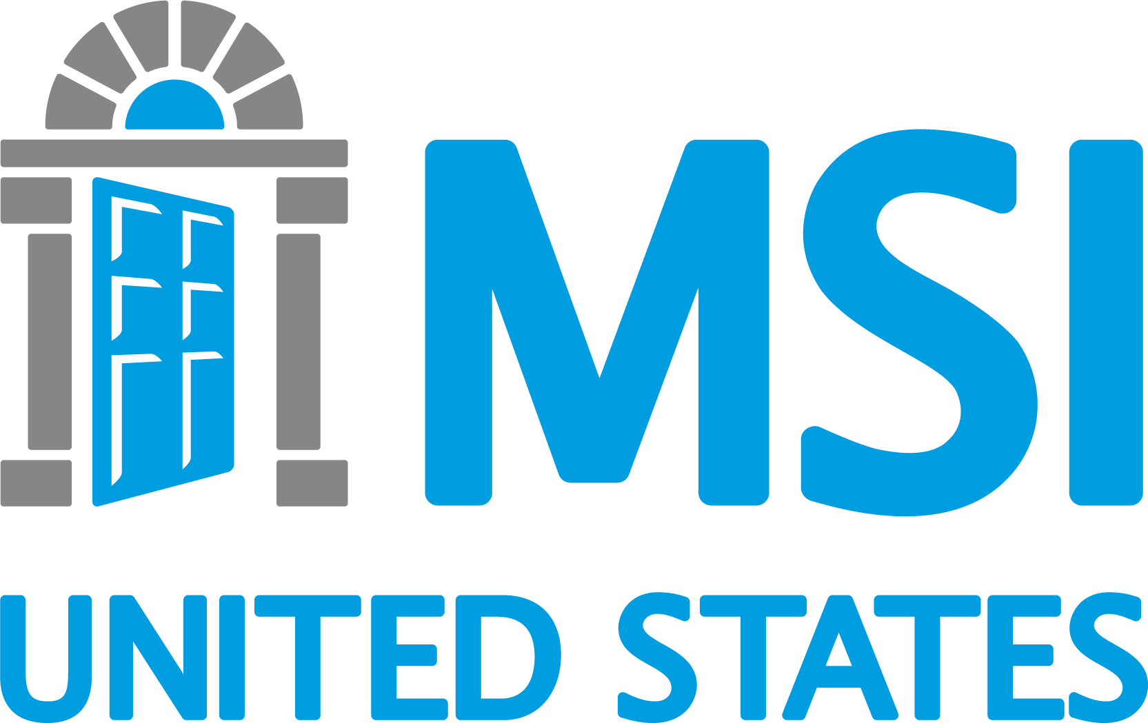 MSI USA Logo
